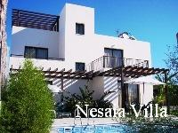 cyprus holiday villa nesaia
